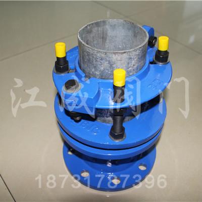 铸铁管防脱甲管伸缩器
