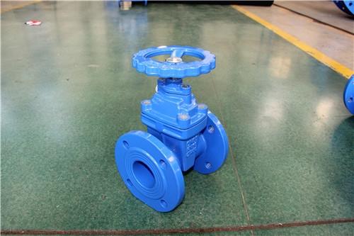 排水管道专用软密封闸阀